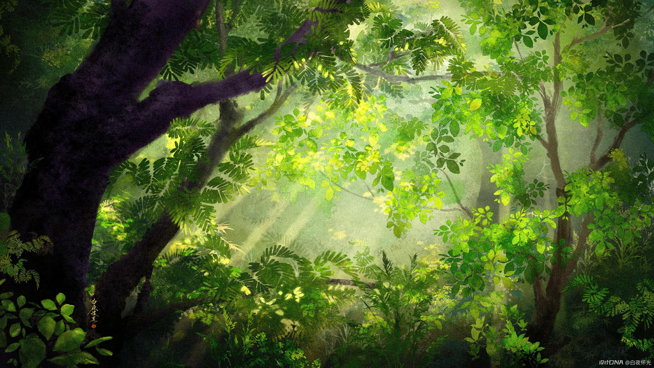 夏日密林 图1