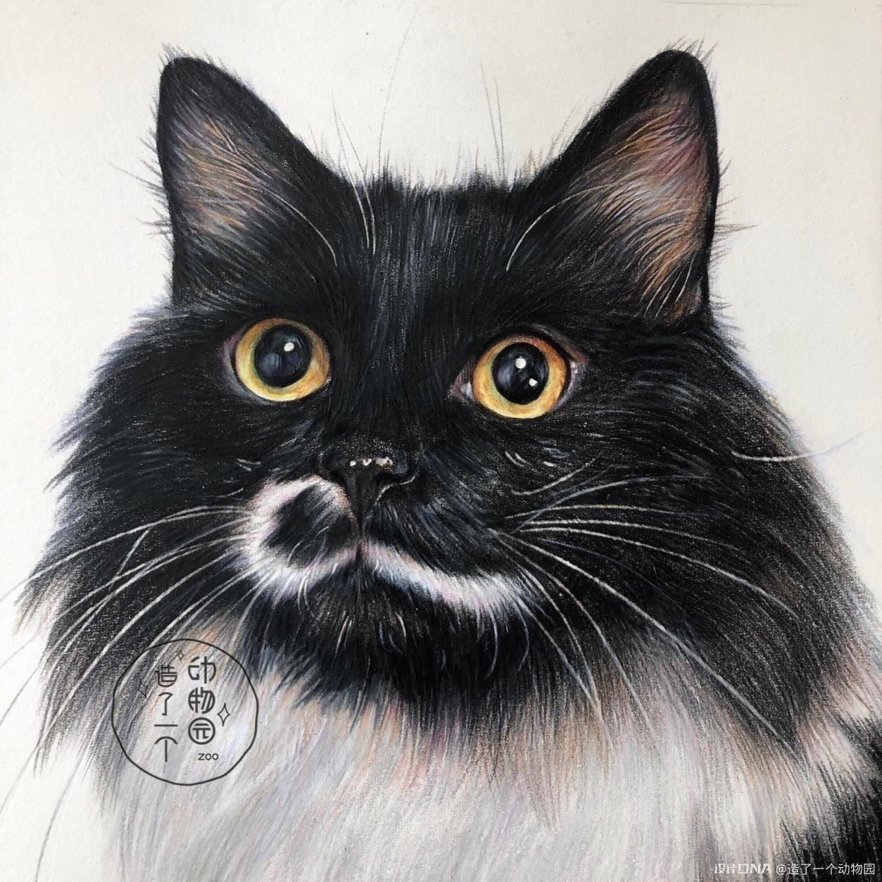 手绘彩铅动物 图7