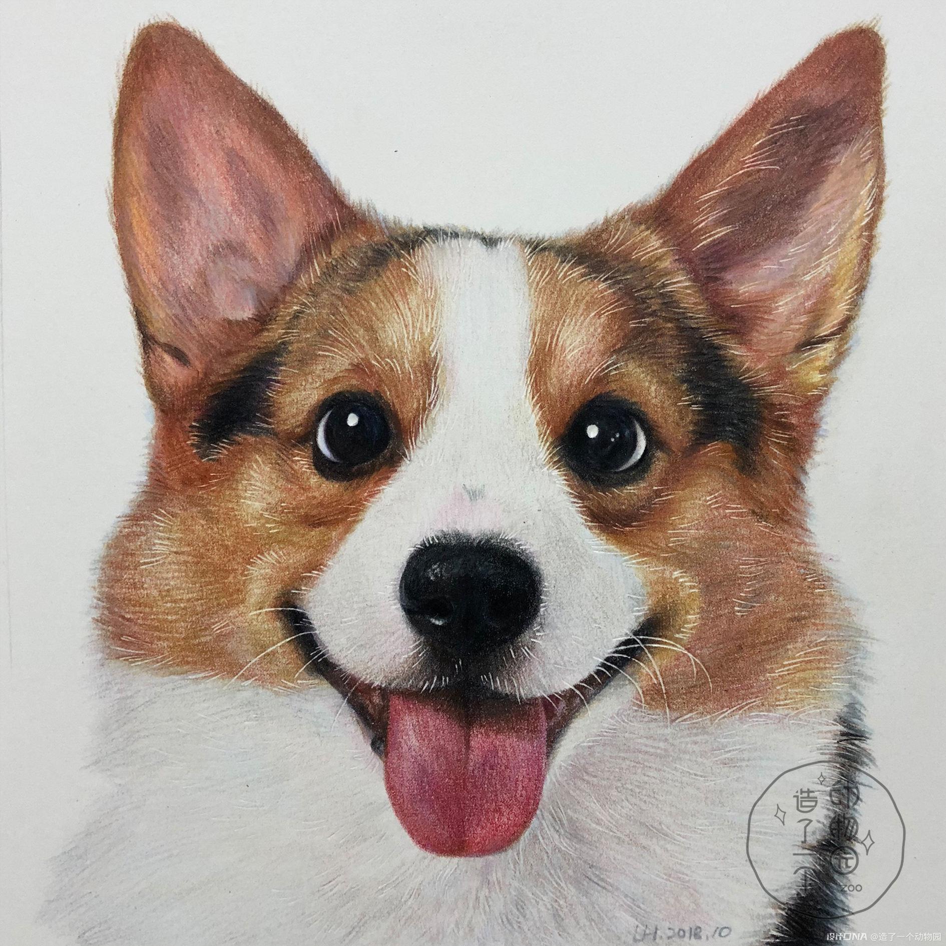 手绘彩铅动物 图3