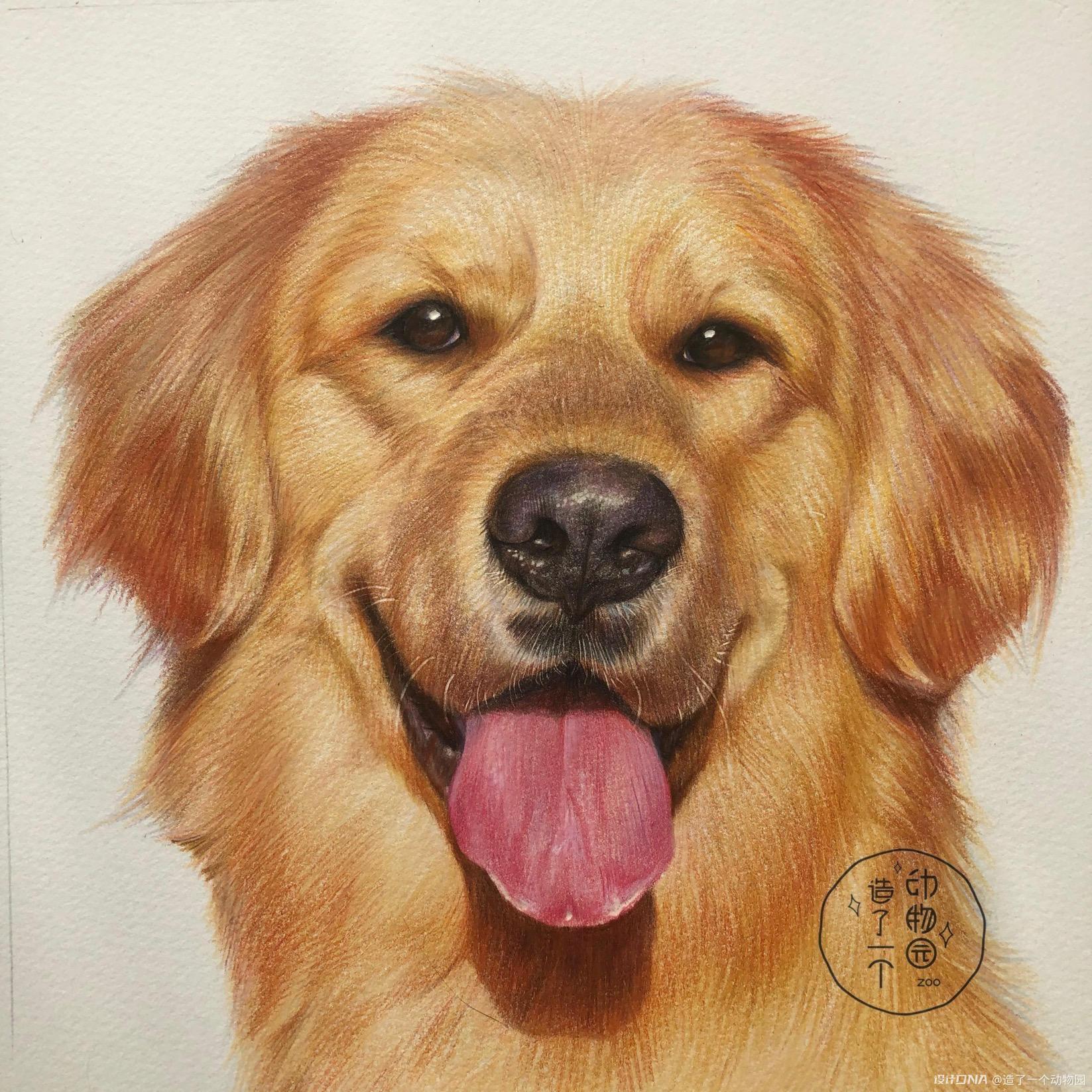 手绘彩铅动物 图1