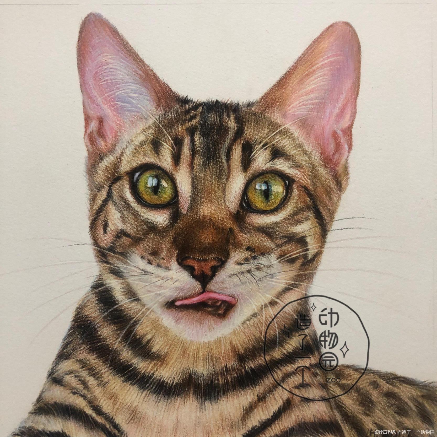 手绘彩铅动物 图8